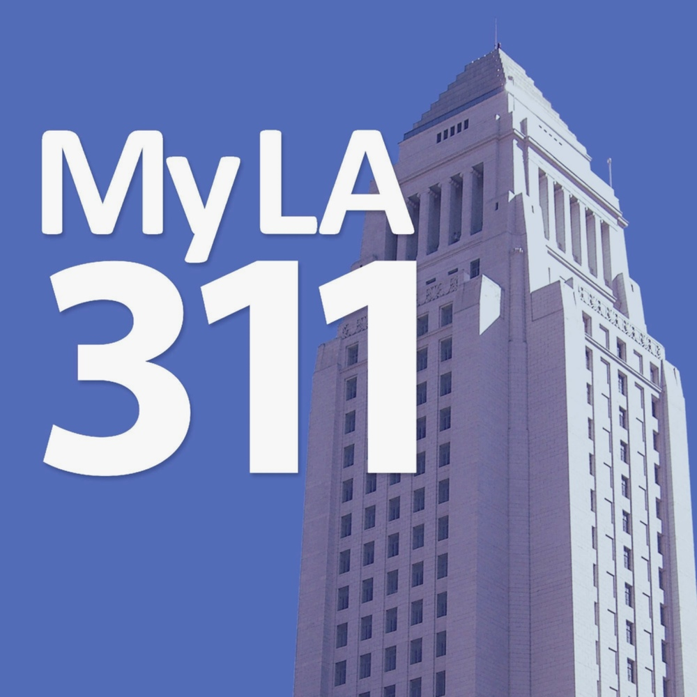 My 311 LA