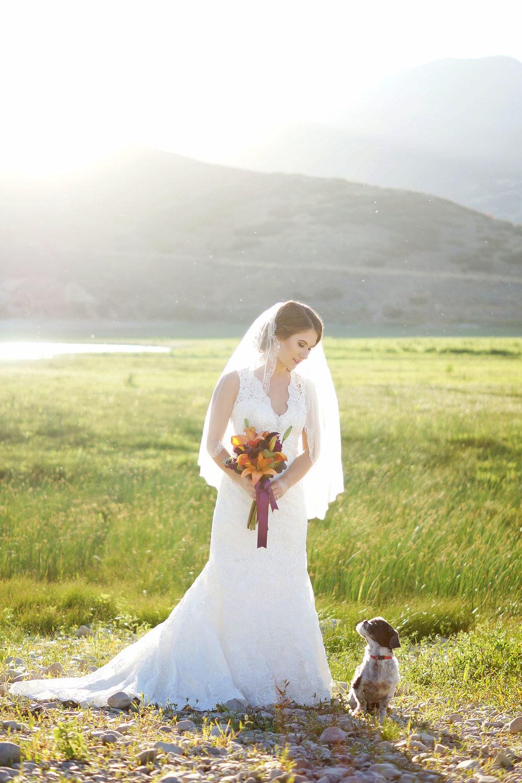 amber-shaw-photography-wedding-0101.jpg
