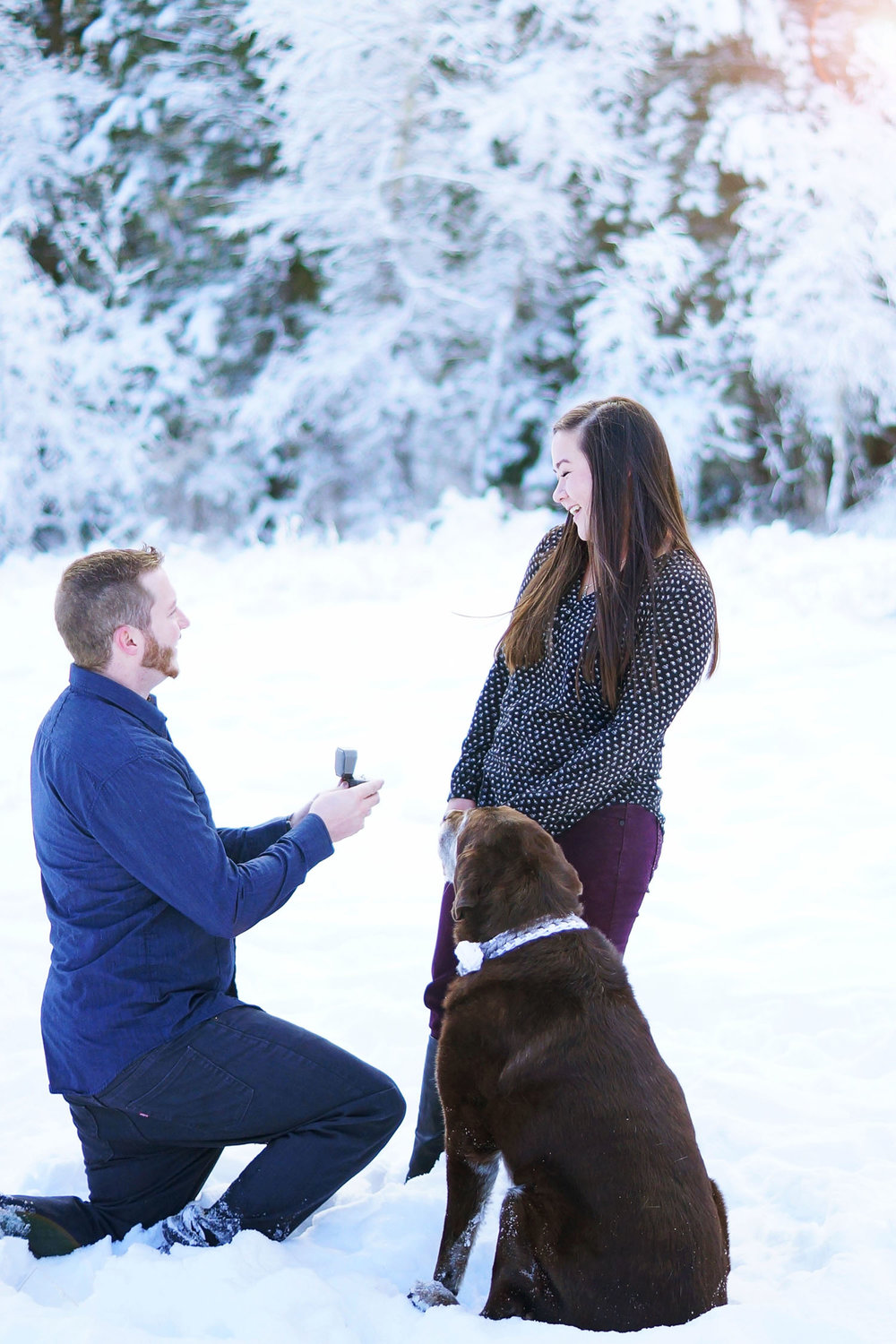 Amber_Shaw_Photography_Utah_Engagement_0087.jpg