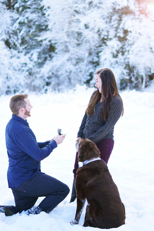 Amber_Shaw_Photography_Utah_Engagement_0087.jpg