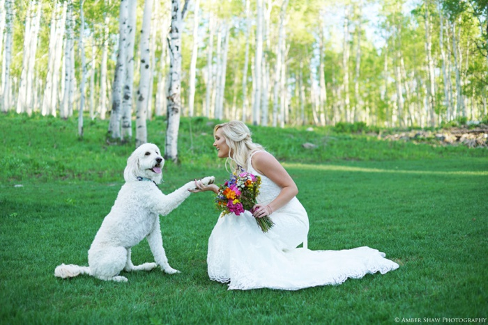 Aspen_Tree_Bridals_Utah_Wedding_Photographer_0019.jpg