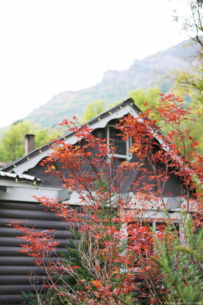 Millcreek_Inn_Utah_Wedding_Photographer_0003.jpg