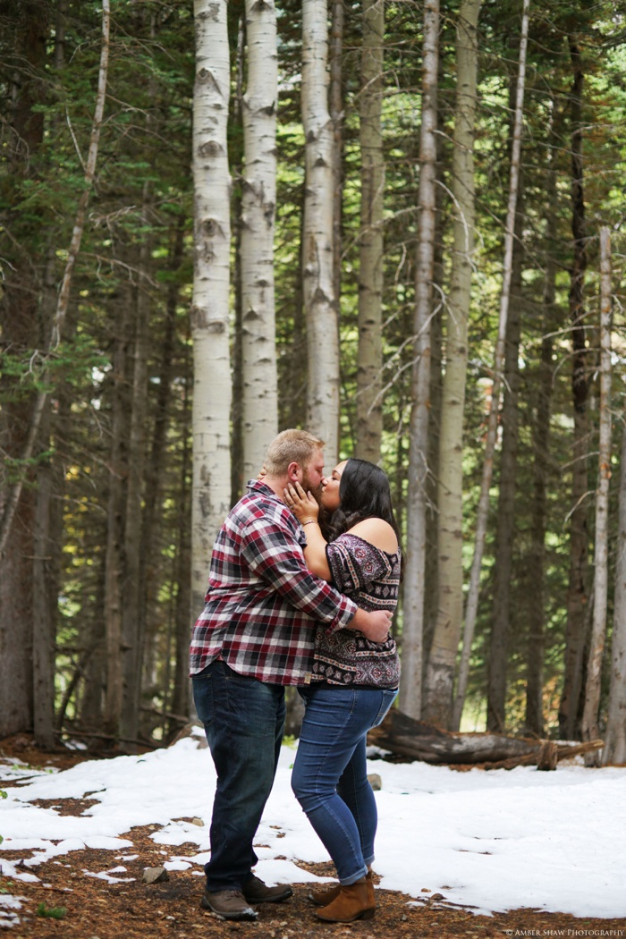 Little_Cottonwood_Engagement_Utah_Wedding_Photographer_0014.jpg