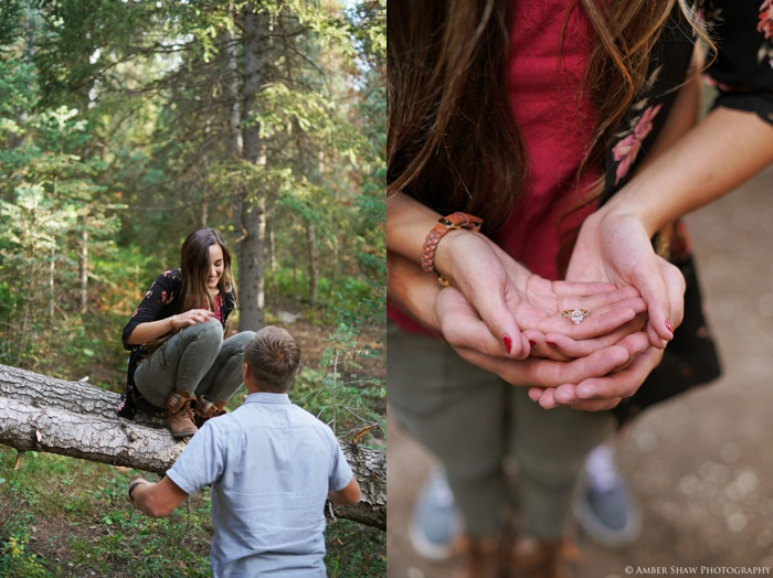 Summer_Mountain_Engagement_Look_Utah_Wedding_Photographer_0050.jpg