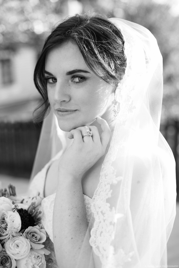 This_Is_The_Place_Bridals_Utah_Wedding_Photographer_0032.jpg