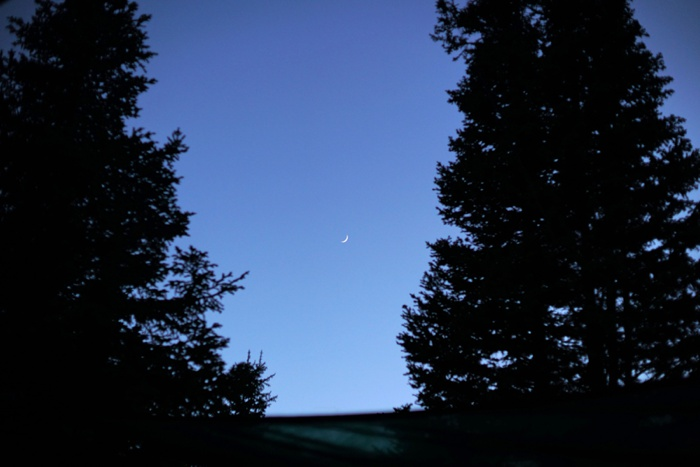 Silver_Fork_Lodge_Summer_Wedding_Utah_Photographer_0084.jpg