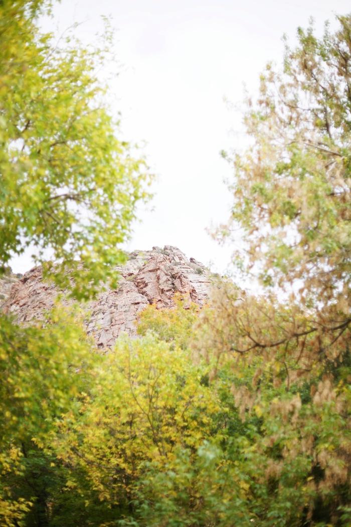 Louland_Falls_October_Wedding_Utah_Photographer_0002.jpg