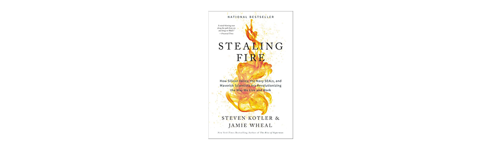 Book-Preview-Fire.png