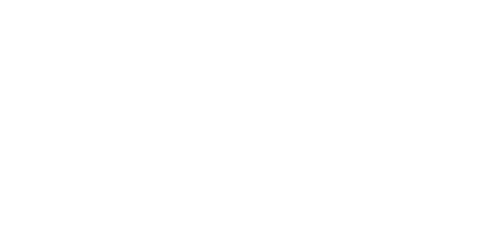 MAGA_SOUTHDOC_2016_winner.png
