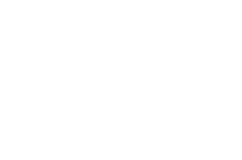 BEST DOCUMENTARY - SHANGHAI INTERNATIONAL FILM  TV FESTIVAL - 2017.png