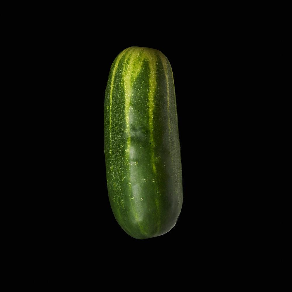 CUCUMBER-ORGANIC-FOOD-GARDEN-VEGETABLE-©-JONATHAN-R.-BECKERMAN-PHOTOGRAPHY.jpg