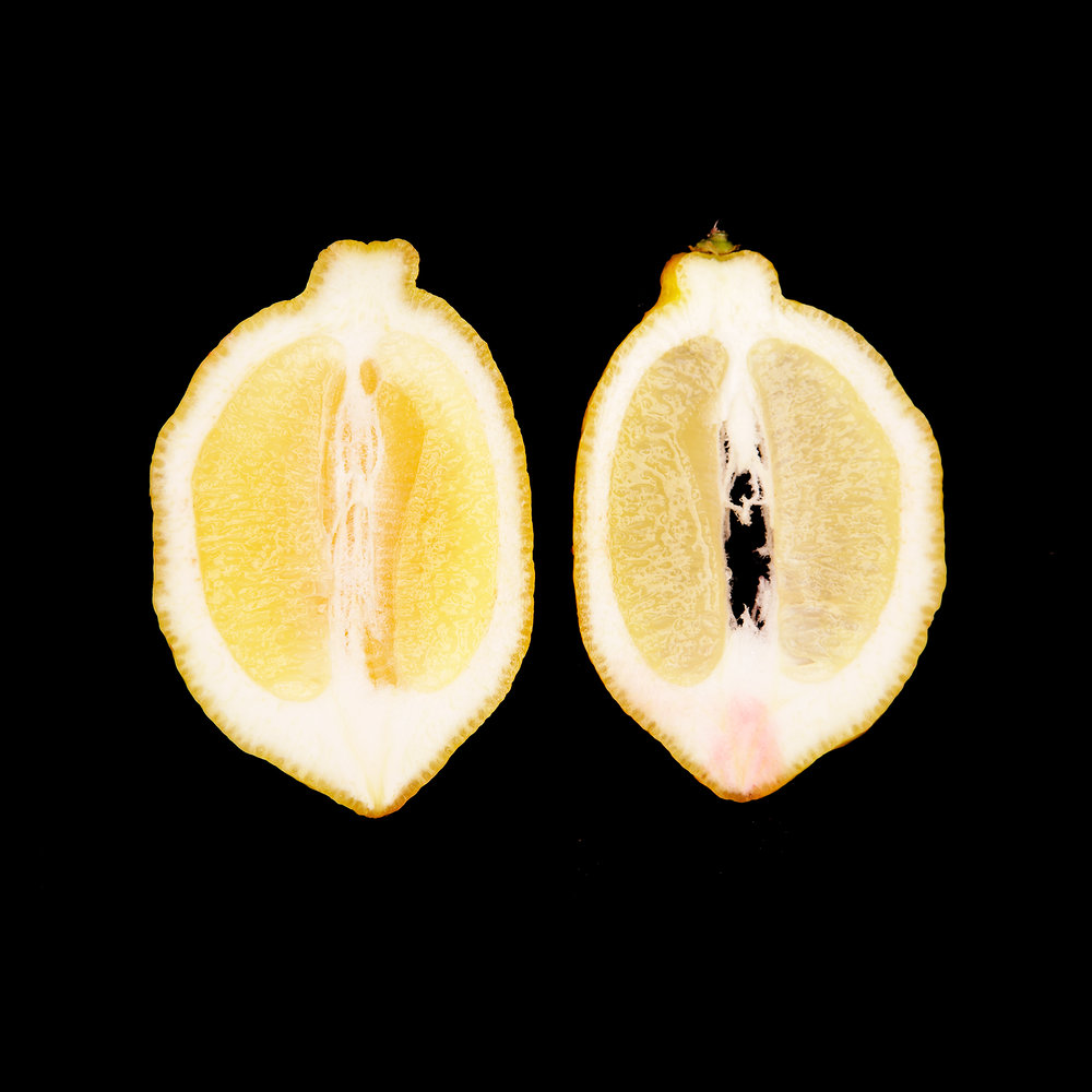 LEMON-HALVED-ORGANIC-FRUIT-FOOD-WILTSHIRE-FARM-©-JONATHAN-R.-BECKERMAN-PHOTOGRAPHY.jpg