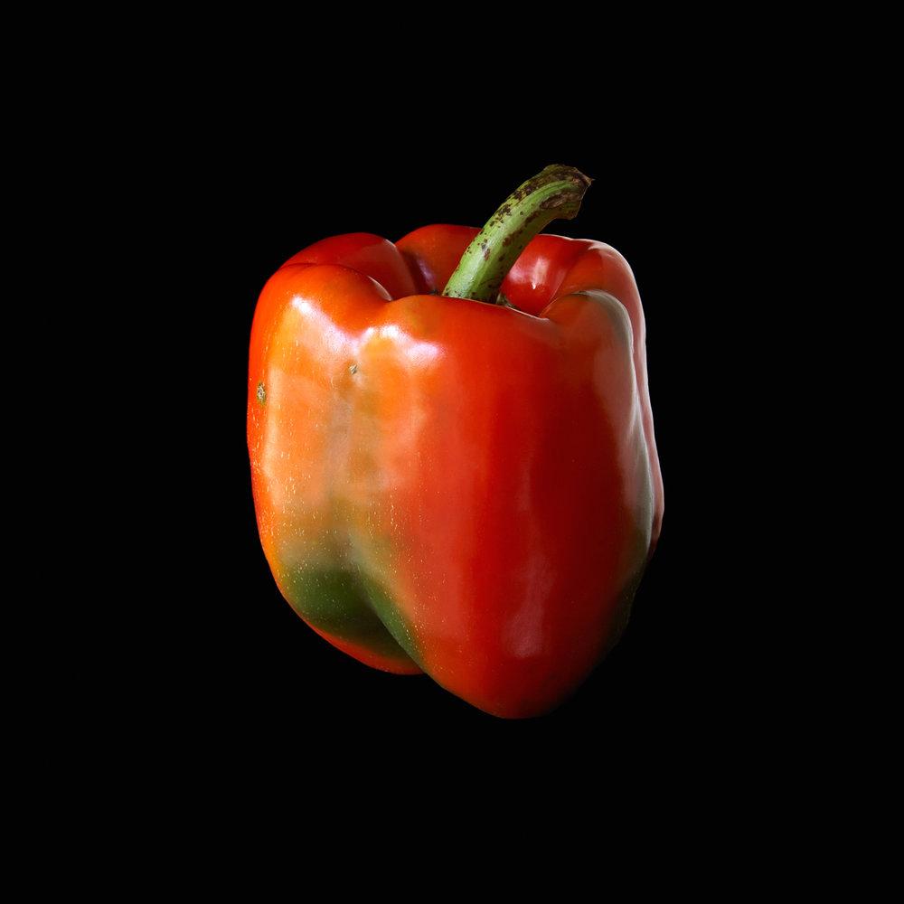 PEPPER-RED-02-RIVERBANK-FARM-ORGANIC-FOOD-VEGETABLE-©-JONATHAN-R.-BECKERMAN-PHOTOGRAPHY.jpg