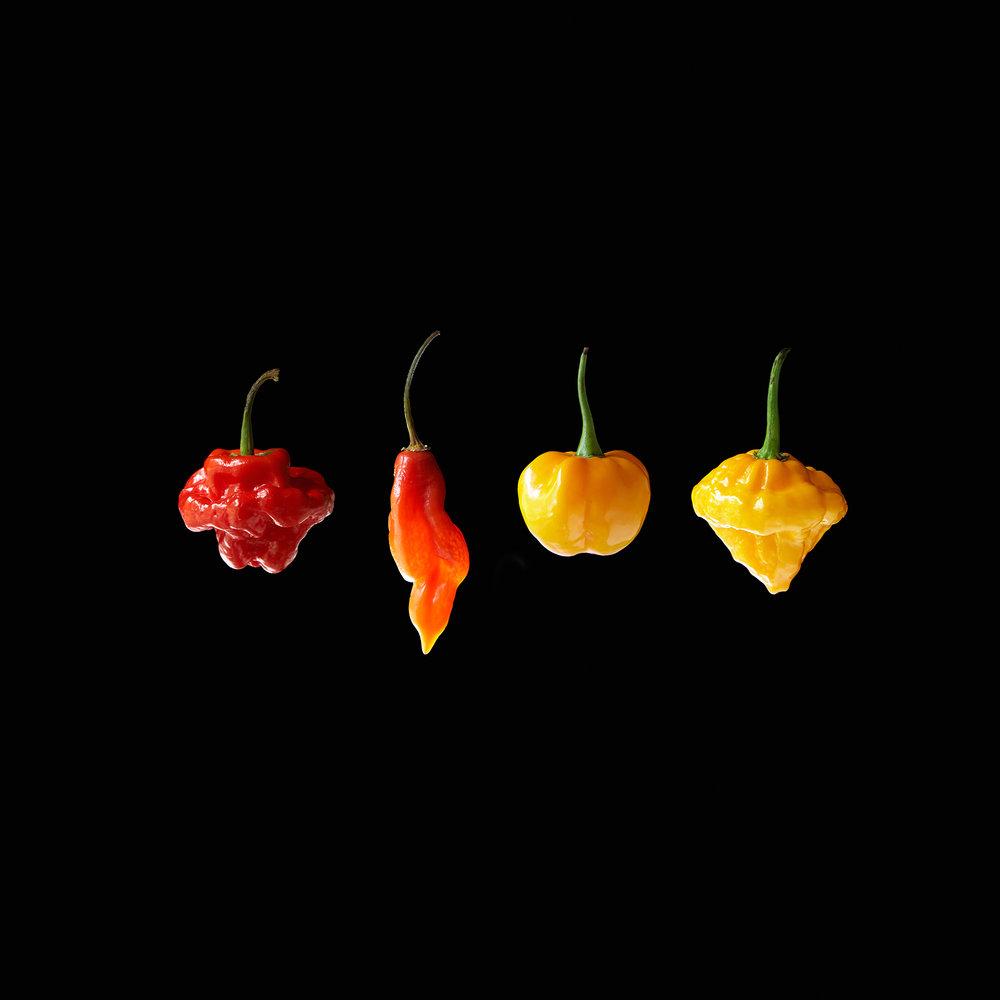 PEPPERS-HOT-COLLECTION-SALSA-ORGANIC-FOOD-VEGETABLE-©-JONATHAN-R.-BECKERMAN-PHOTOGRAPHY.jpg