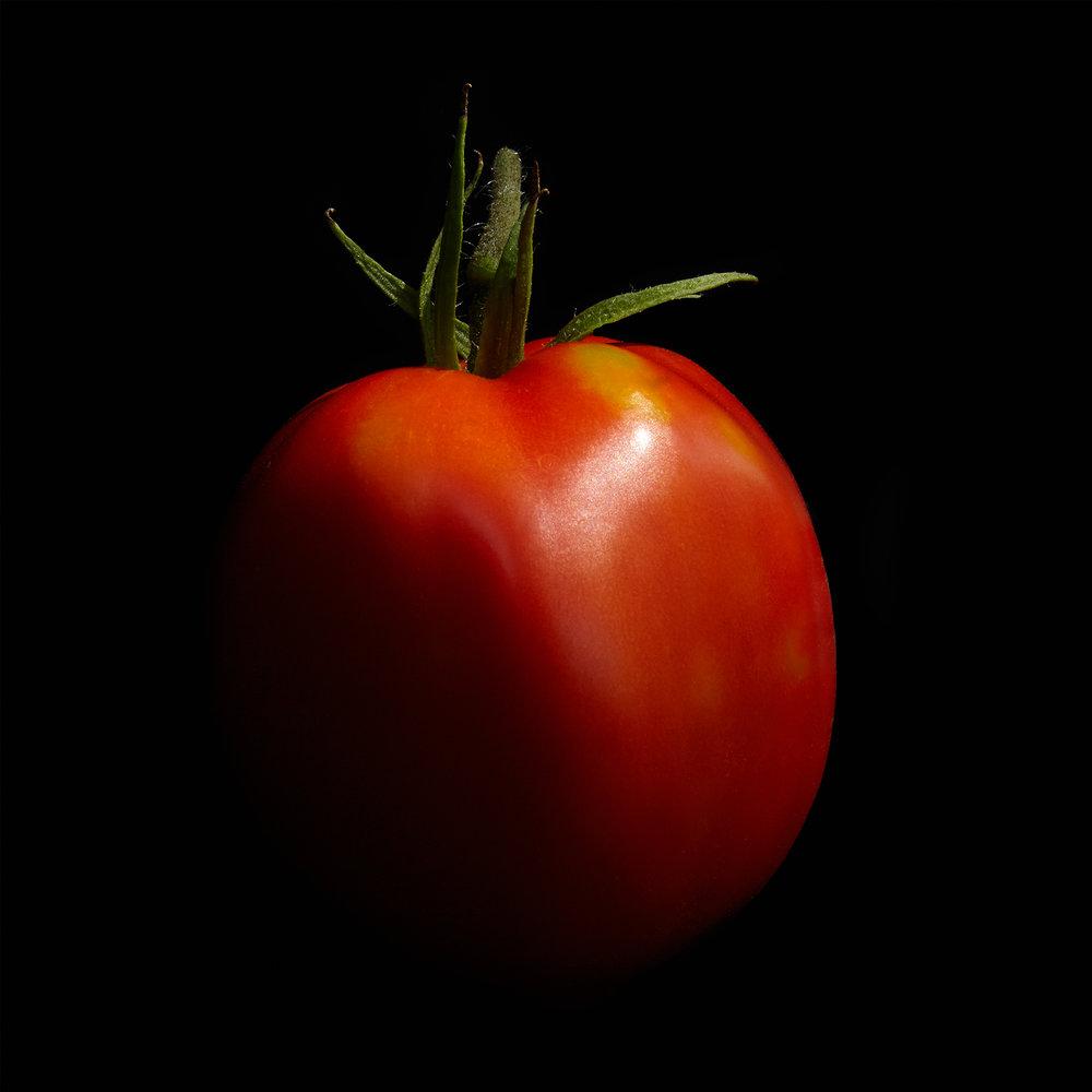 TOMATO-ROMA-ORGANIC-RED-FRUIT-ON-BLACK-©-JONATHAN-R.-BECKERMAN-PHOTOGRAPHY.jpg