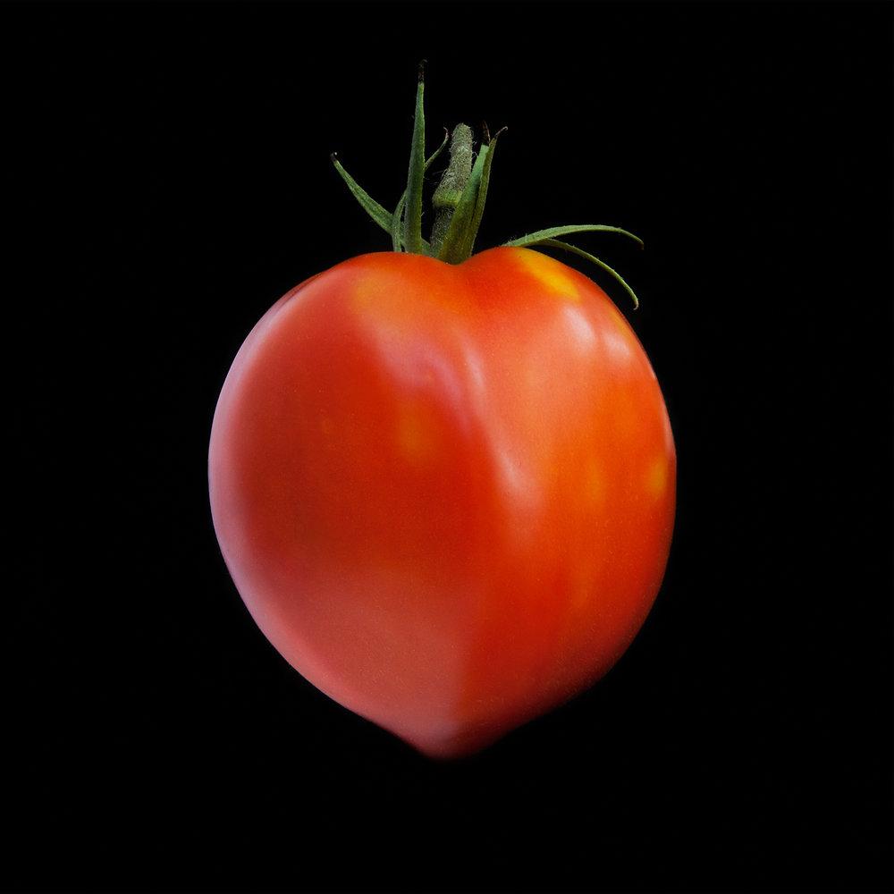 TOMATO-ROMA-RED-00-ORGANIC-FRUIT-©-JONATHAN-R.-BECKERMAN-PHOTOGRAPHY.jpg