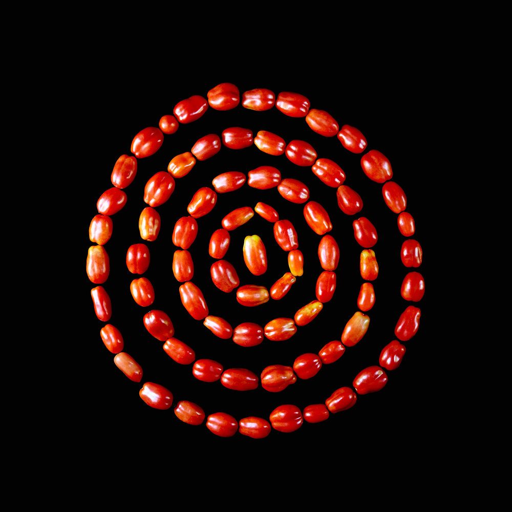 TOMATO-SAN-MARZANO-ORGANIC-FOOD-FRUIT-©-JONATHAN-R.-BECKERMAN-PHOTOGRAPHY.jpg