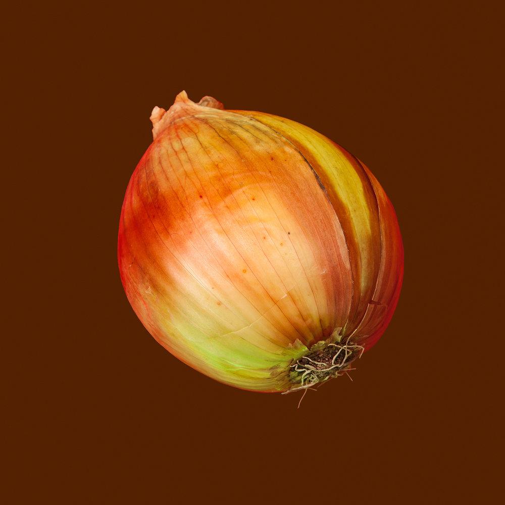 ONION-SWEET-ORGANIC-OINION-VEGETABLE-VFS-RIDGEWAY-FARM-©-JONATHAN-R.-BECKERMAN-PHOTOGRAPHY.jpg