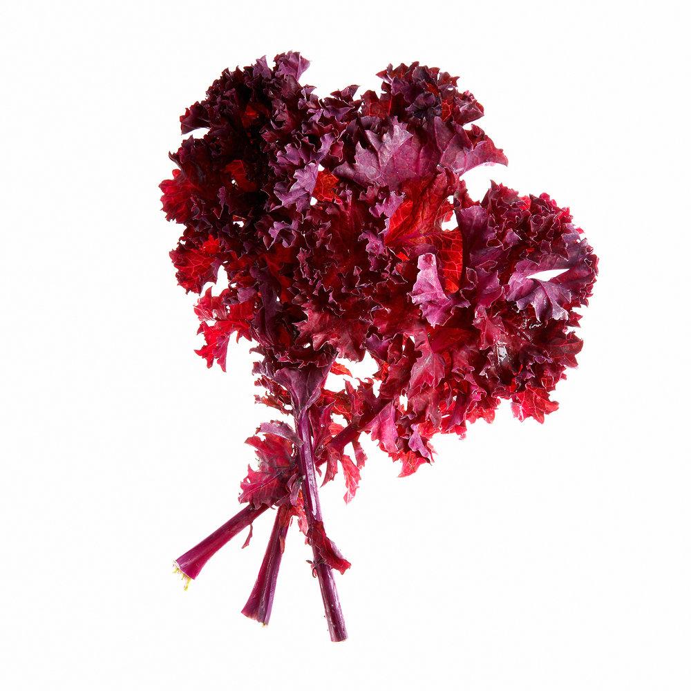 KALE-RED-ORGANIC-VEGETABLE-FOOD-©-JONATHAN-R.-BECKERMAN-PHOTOGRAPHY.jpg