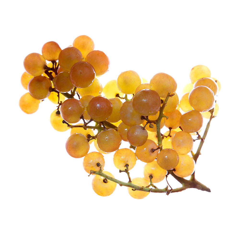 GRAPES-YELLOW-ORGANIC-FOOD-FRUIT-©-JONATHAN-R.-BECKERMAN-PHOTOGRAPHY.jpg