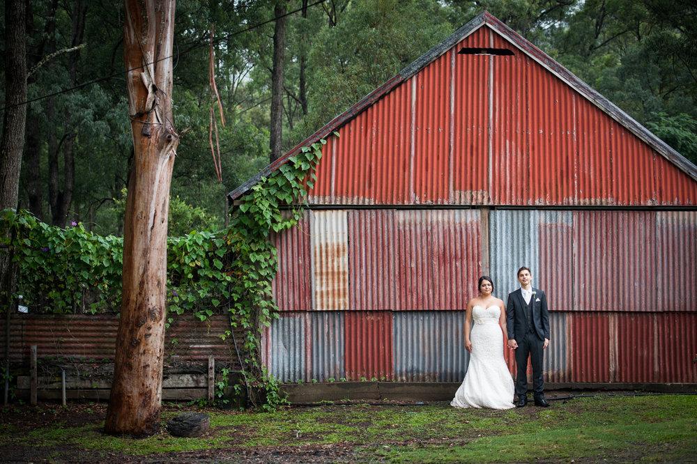 Cedar Creek Lodges wedding_New Black Studios 34.jpg