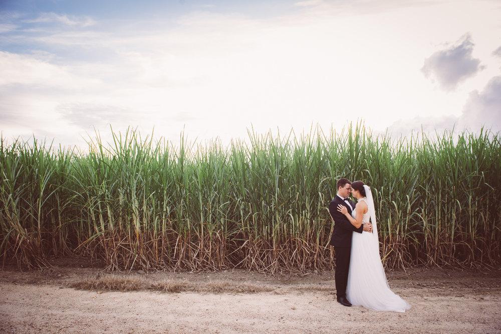 Osteria wedding_New Black Studios 50.jpg