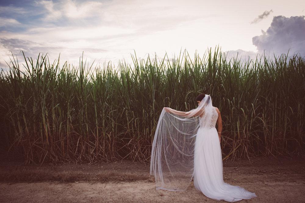 Osteria wedding_New Black Studios 54.jpg