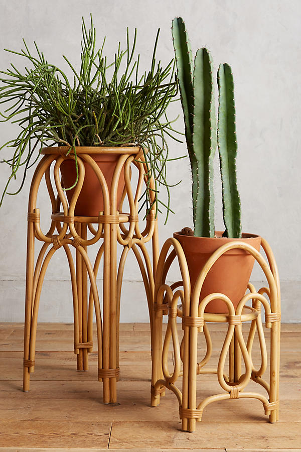 anthropologie rattan plant stand