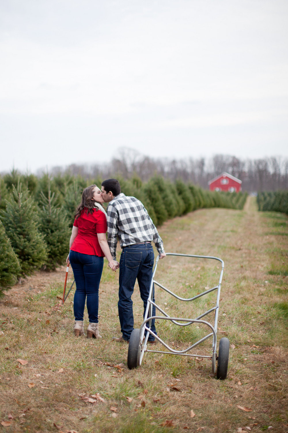Winter Christmas Tree Farm Engagement Shoot Sincerely Pete Events Liz and Ryan Photography