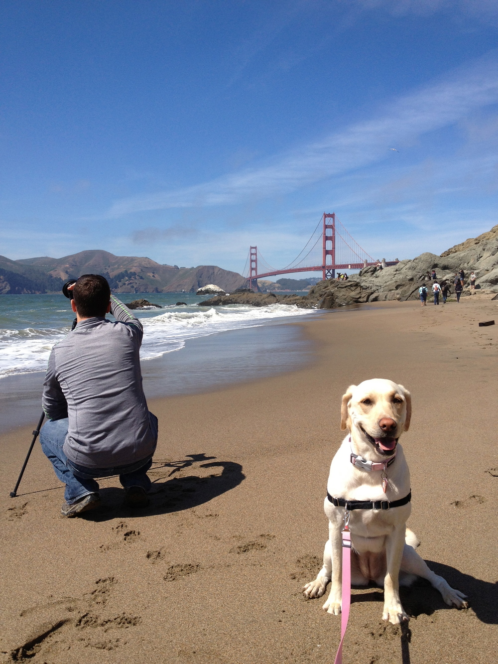 Dave Gordon Photographer Baker Beach Luna Lab.jpg