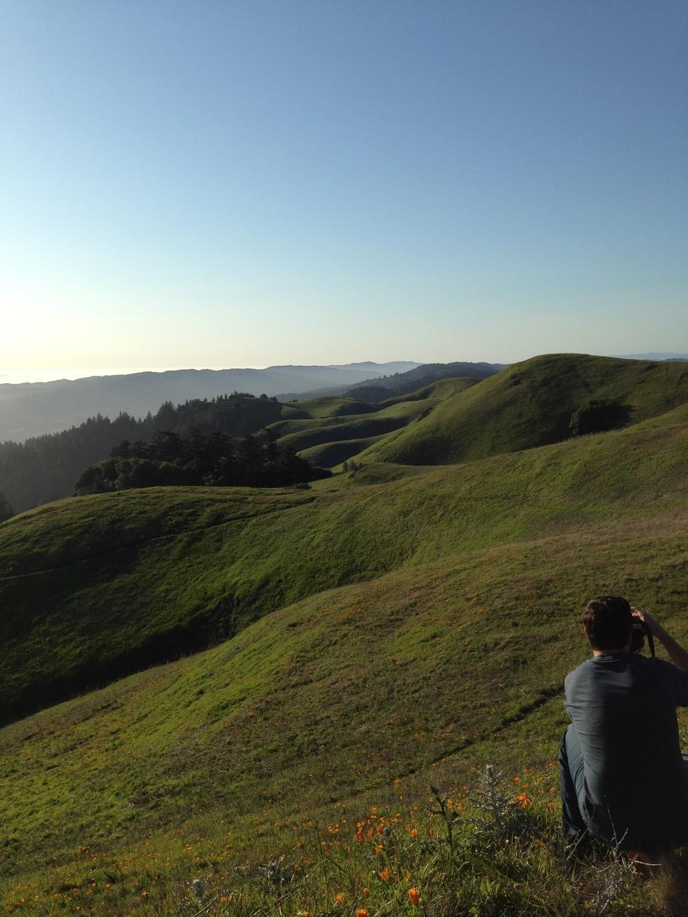 Dave Gordon Photographer Marin County Mt Tam Green Spring.jpg