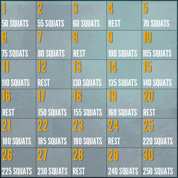 The infamous 30 Day Squat Challenge