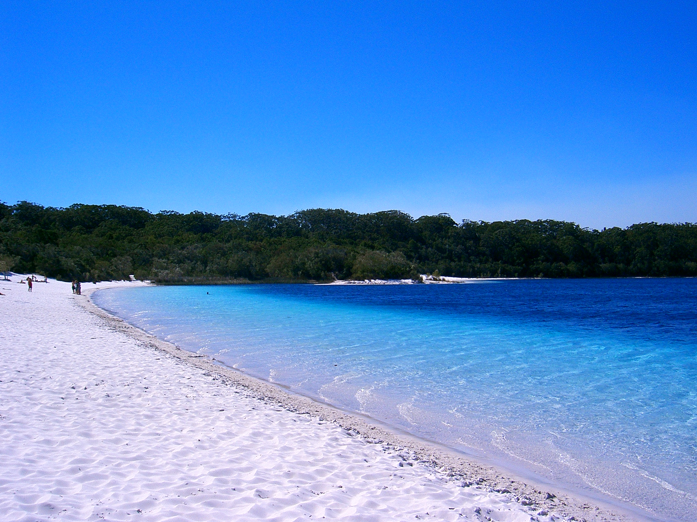 The beaches of Fraser Island.