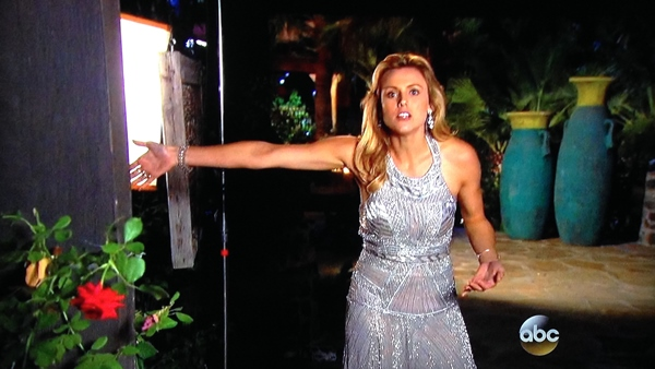 bachelor ashley s 1