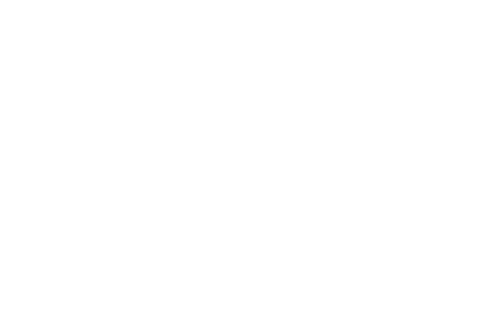 FrequentFlyers.png