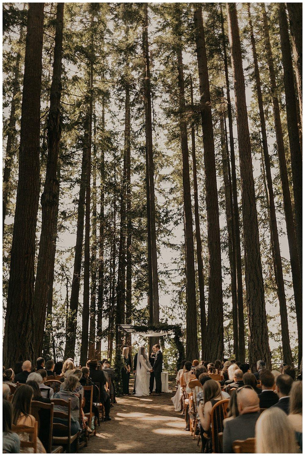 Bixby-+-Pine-Samantha-McFarlen-Kitsap-Memorial-State-Park-_0028.jpg