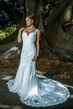 2015 Wedding Dress Collection - The Complete Bridal
