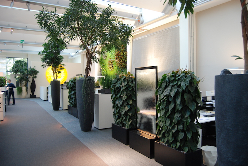 ReWork HR: Biophilic Office Designs