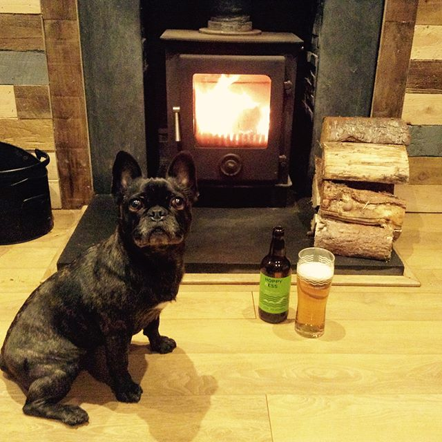 Happiness is Hoppyness in front of the fire! . . #hoppyness  #lochnessbrewery  #brewedinthehighlands #lilylovesaphoto
