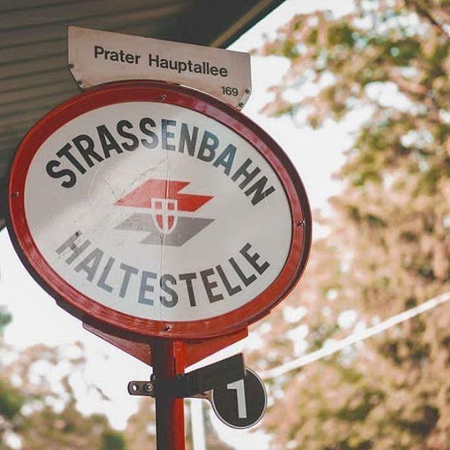 Morgen gibts die vorletzte Chance uns nochmals live zu hören, schade eigentlich dass die @tramsessions.vienna schon ausverkauft ist 🙈 Und nicht vergessen, heut ist wieder Donnerstag ☺️💋 . . 📷 @benedikt_weiss  #tramsessions #acoustic #bim #1konzertkommtdannnoch