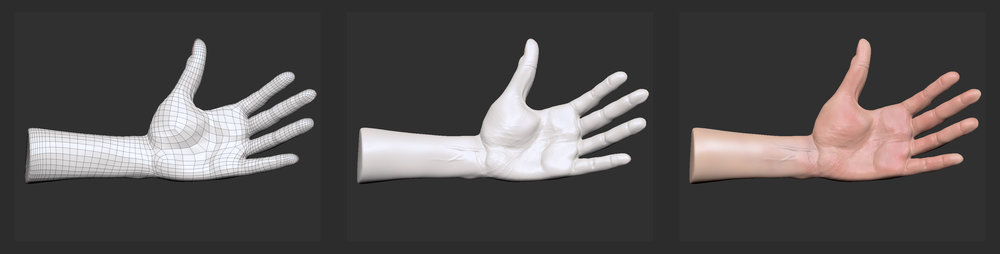 hand4prog.jpg