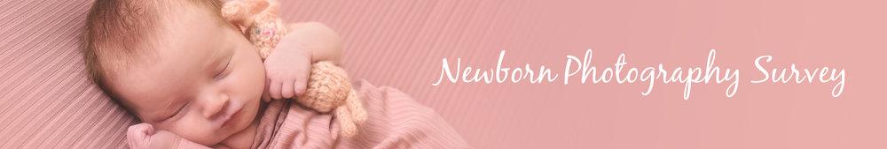 dunedin newborn photographer