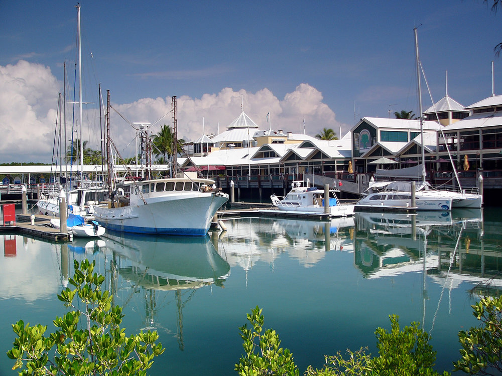 port-douglas-marina-choo-choos.jpg