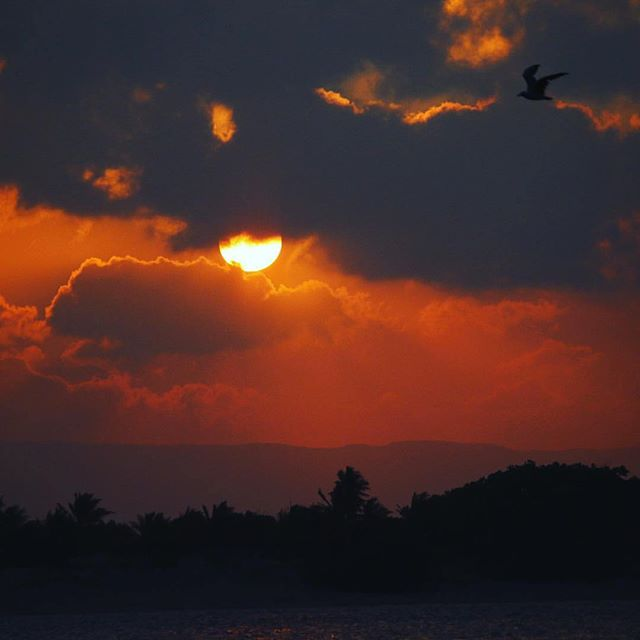 Capture sunset over the Daintree ranges like you've never seen before! Sunset cruises daily onboard @choochooexplorer 📸☀️🔥 | A few tips from @jackson_denneen_photography probably wouldn't go astray! Great shot! ⚓️