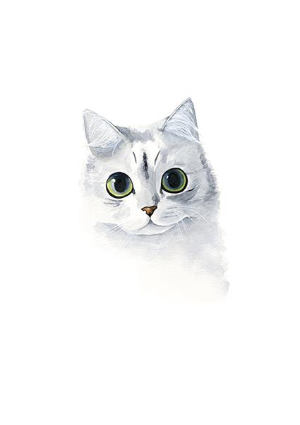 gato. ILUSTRACIÓN EN ACUARELA. // LÁMINA IMPRESIÓN GICCLÉ TAMAÑO A3