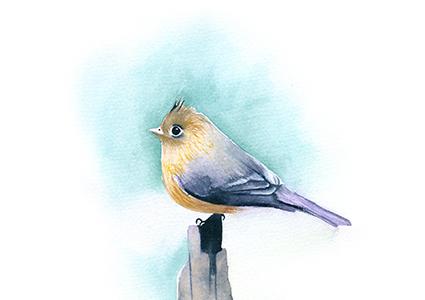 pájaro. ILUSTRACIÓN EN ACUARELA. // LÁMINA IMPRESIÓN GICCLÉ TAMAÑO A5