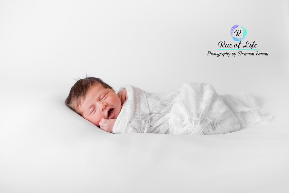 newborn photography pulaski ny