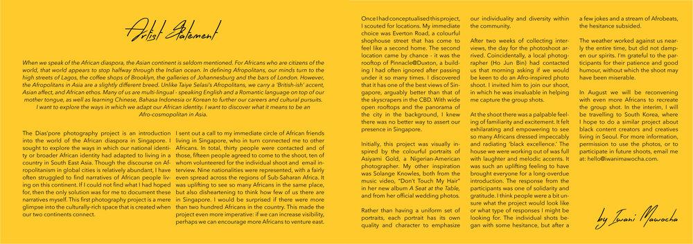 Diaspore Website2.jpg