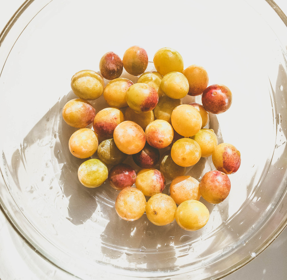 Making Mirabelle Jam: whole Mirabelles
