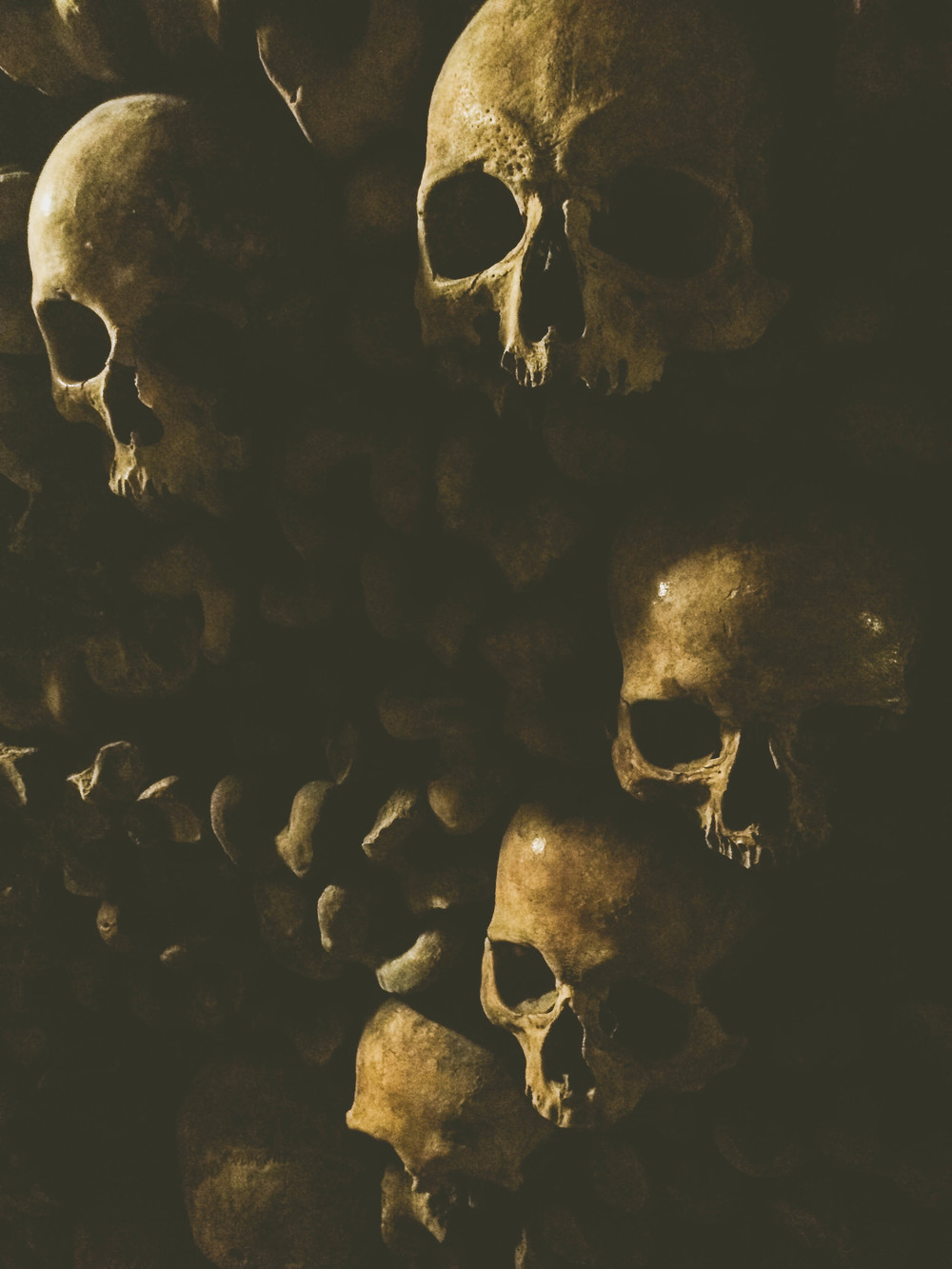 A close-up of some of the past residents of Paris; their skulls on display in the Catacombs